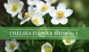 Chelsea Flower Show cz. I