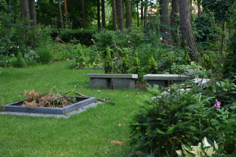 ogród Joli 10