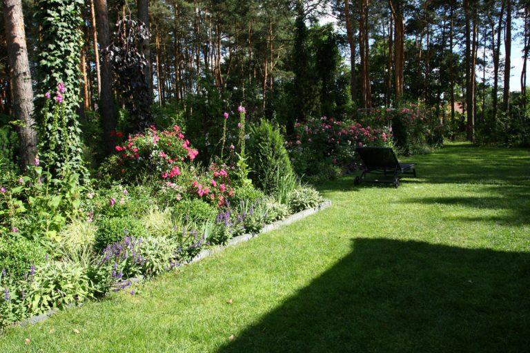 ogród Joli 2