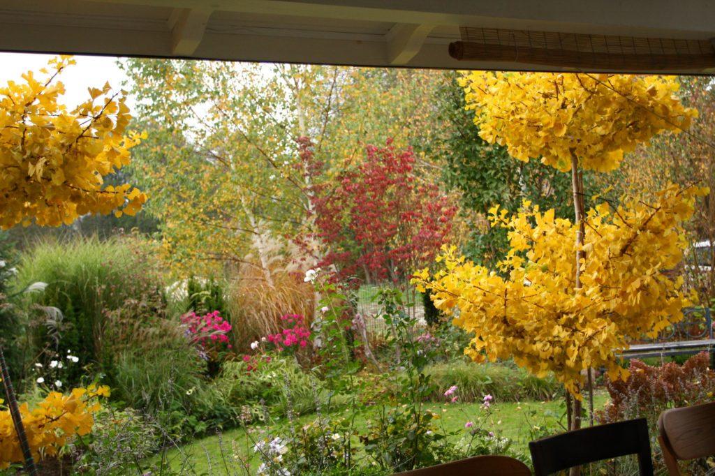 ogród Ani w październiku
